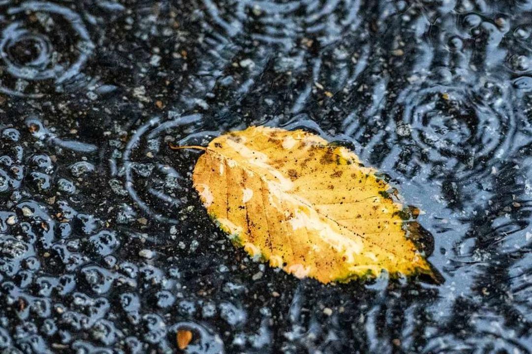 Regen füllt unser Grundwasser auf.    Foto: Armin Weigel (dpa)