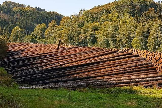 Forst BW rechtfertigt die Holz-Beregnung im Kleinen Wiesental