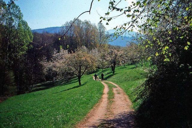 Rund um Badenweiler, wo sich Maler und Schriftsteller wohl fühlten