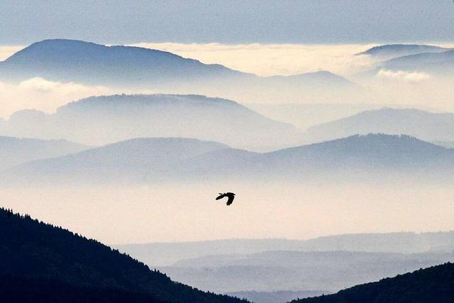 Schau ins Basler Land – vom der Hohen Winde im Schweizer Jura