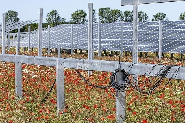 Solarpark wirft Grundsatzfragen auf