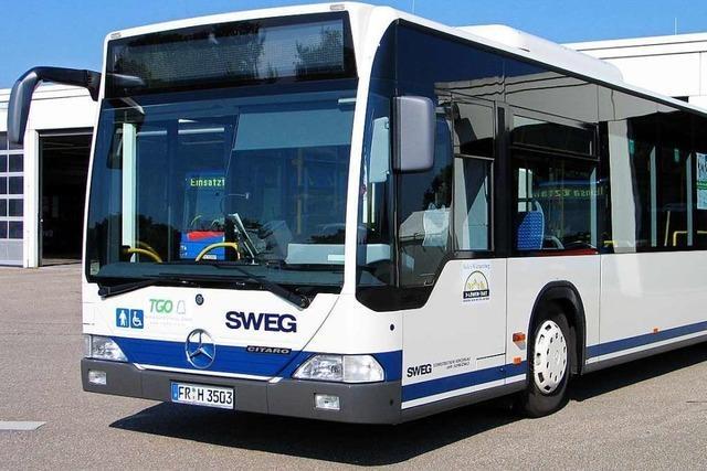 Die Buslinie 113 von Rust nach Lahr soll künftig werktags fast im Stundentakt fahren