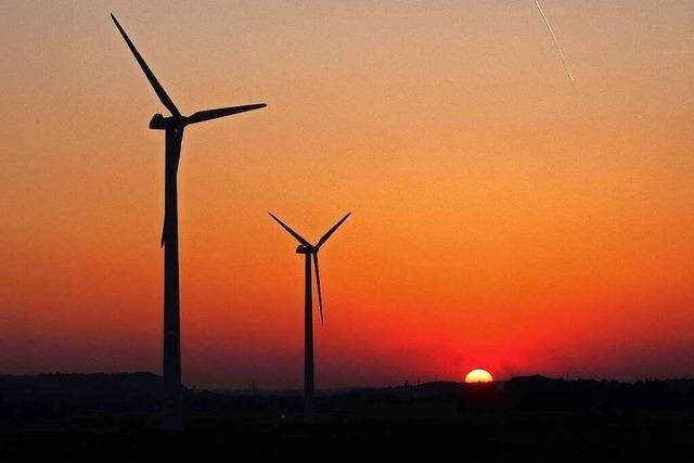 Umweltschutz sorgt für Zuwachs bei Green Jobs