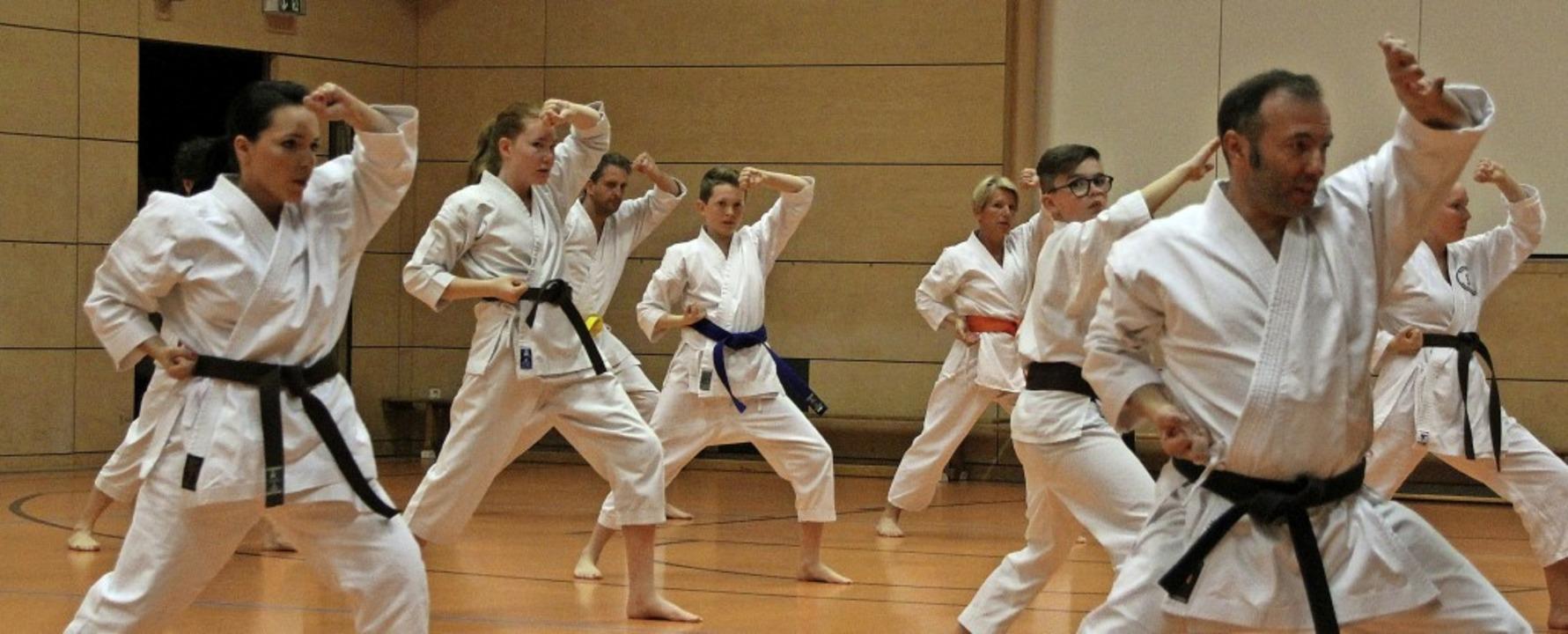 Bis März 2019 fand das Kampfsport-Trai...rend Corona, gelten besondere Regeln.     Foto: Rolf Sprenger