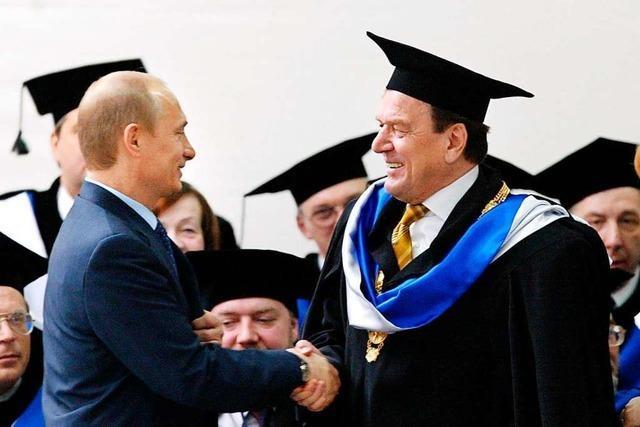 Nawalny: Schröder ist Putins Laufbursche