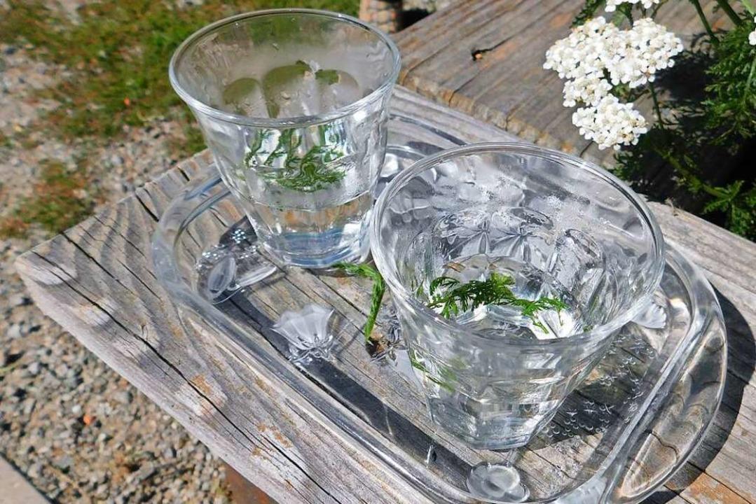 Kräuter schmecken – auch als Tee mit frischen Blüten und Blättern.  | Foto: Andrea Drescher