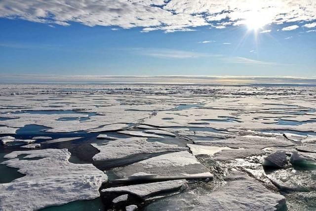 Die ungebremste Eisschmelze in der Arktis hat dramatische Folgen