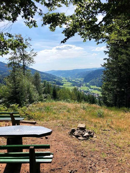 Picknickbank mit Ausblick auf das Dorf Oberprechtal  | Foto: Ronja Vattes