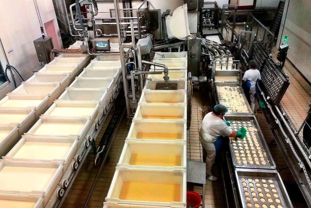 Camembert-Produktion in Livarot  | Foto: Knut Krohn
