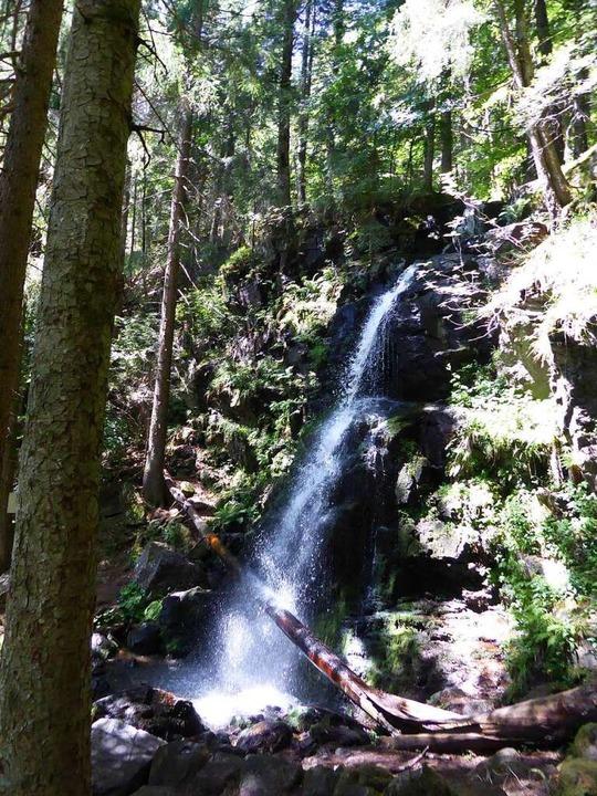 Hier duscht ein Baum: Der obere Teil der Wasserfälle.    Foto: Michael Neubauer