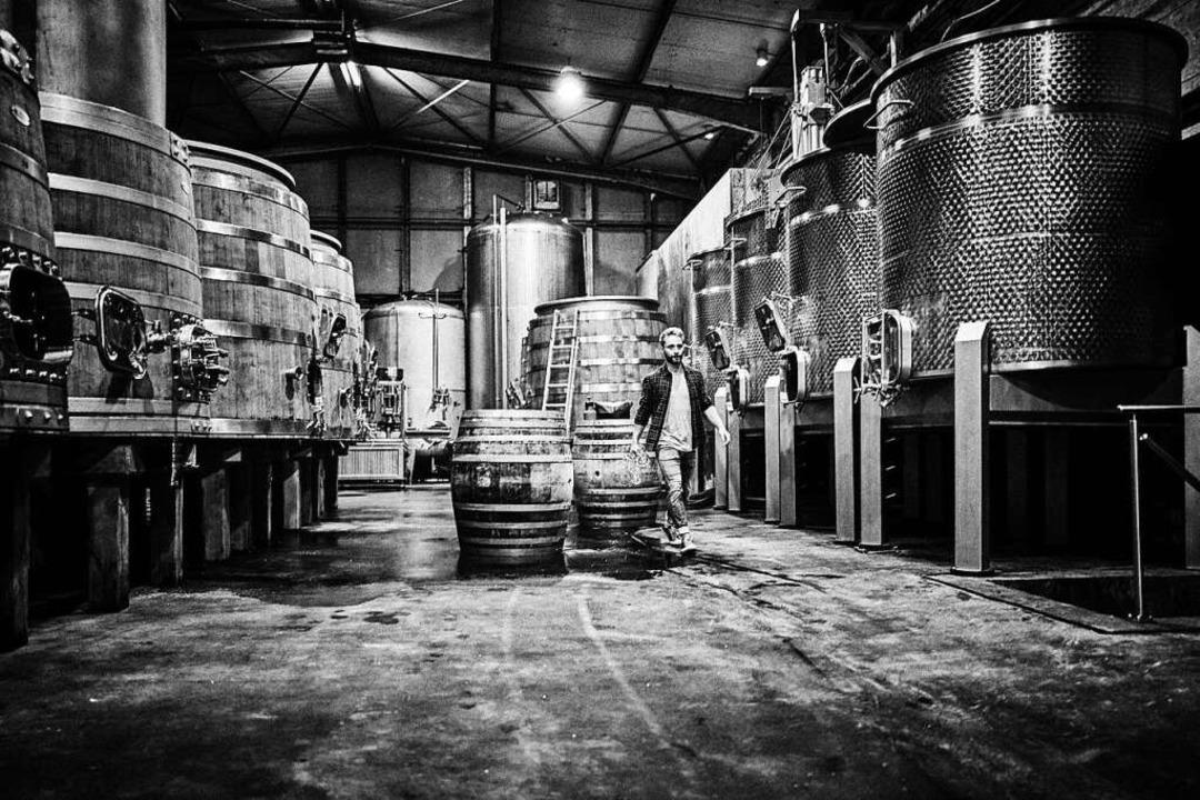 Julian Huber bei der Arbeit im Weinkeller.  | Foto: Felix Groteloh