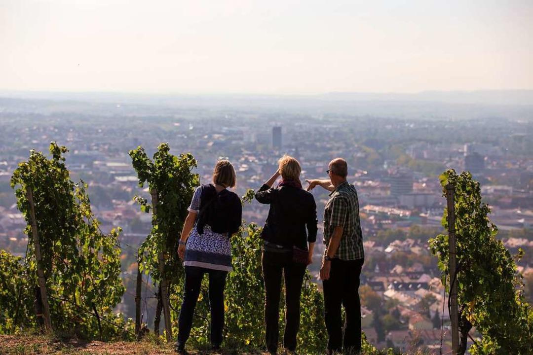 Wandern mit Stadtblick:  Durch die Reben geht es oberhalb von Heilbronn.  | Foto: Heilbronn Tourismus
