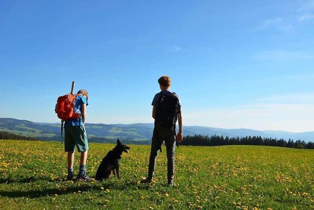 Bei St. Peter gibt es Aussichten wie aus dem Schwarzwaldbilderbuch
