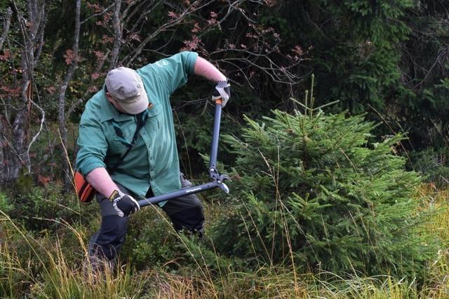 Für den Landschaftspflegetag in Fröhnd werden Helfer gesucht