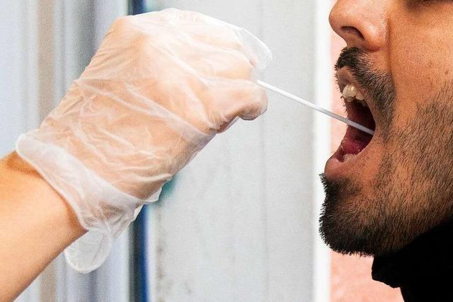 Newsblog-Archiv: Alle Nachrichten zum Coronavirus im Markgräflerland von Juni bis Ende August
