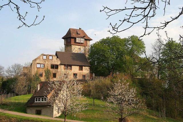 Reizvoller Rundweg von Gerhart's Strauße zur Burgruine Sponeck