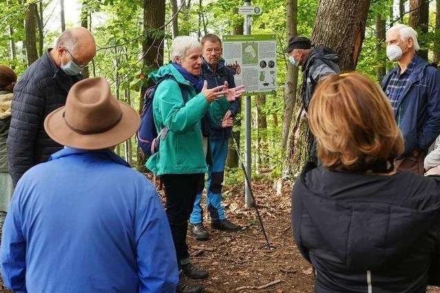 Archäologen führen BZ-Leser über historischen Pfad in Ehrenkirchen