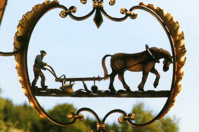 Gegenüber der Gasthaus-Pension zum Pflug weiden die Bisons