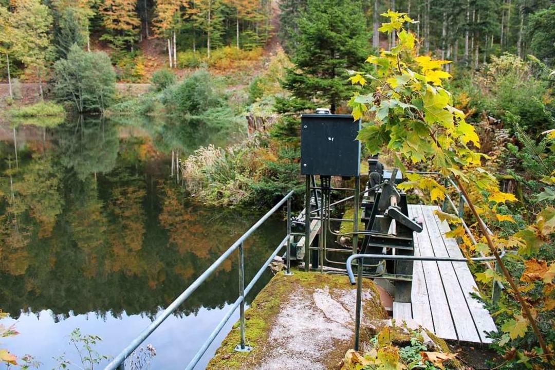 Das Wasserkraftwerk Wacht liegt an der...wurde hier  der kleine See aufgestaut.    Foto: Manuel Hunn