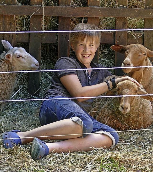 Felix inmitten der Schafe    Foto: Birgit Herrmann
