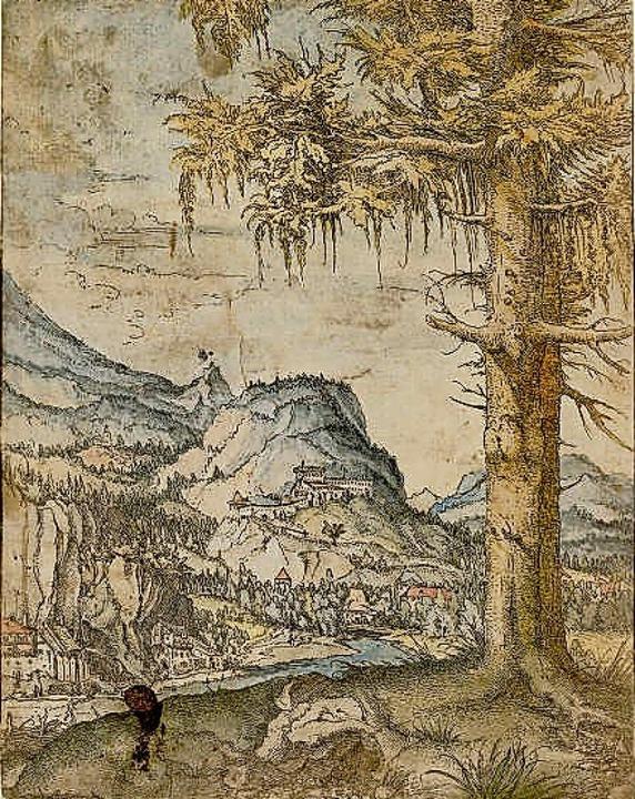 """Albrecht Altdorfer: """"Landschaft mit großer Fichte""""    Foto: Albertina, Wien"""