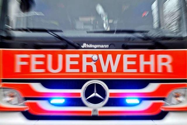Bei einem Kellerbrand in Lörrach werden Personen per Drehleiter gerettet