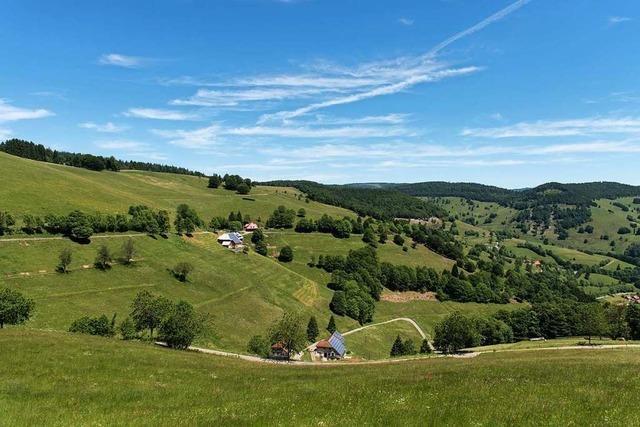 Biosphärengebiet Schwarzwald beteiligt Bürger am Konzept