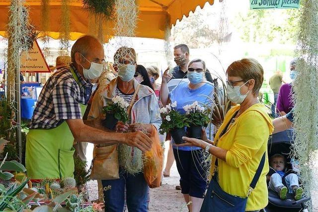 In Rheinfelden geht es nur noch mit Maske auf den Markt