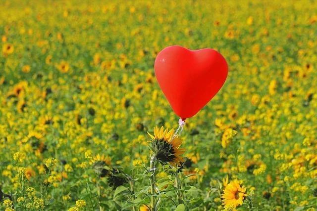 Liebesgruß aus Teningen landet in Seefelder Blumenwiese