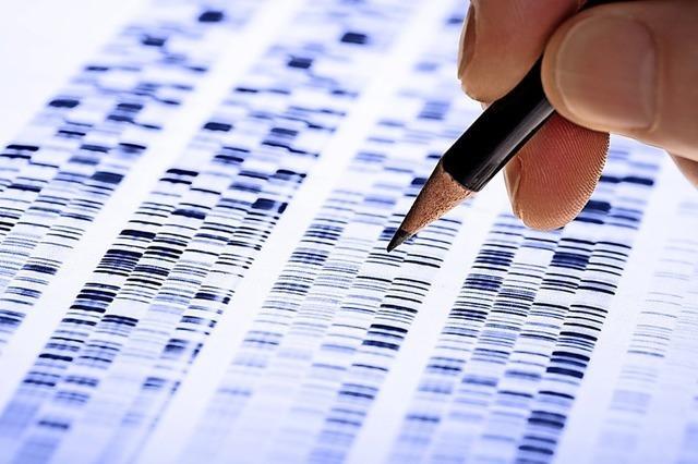 DNA-Gutachten soll im Prozess um versuchte Vergewaltigung in Offenburg zur Klarheit beitragen