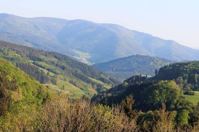 Kleinstadtgeheimtipps: Siegelau