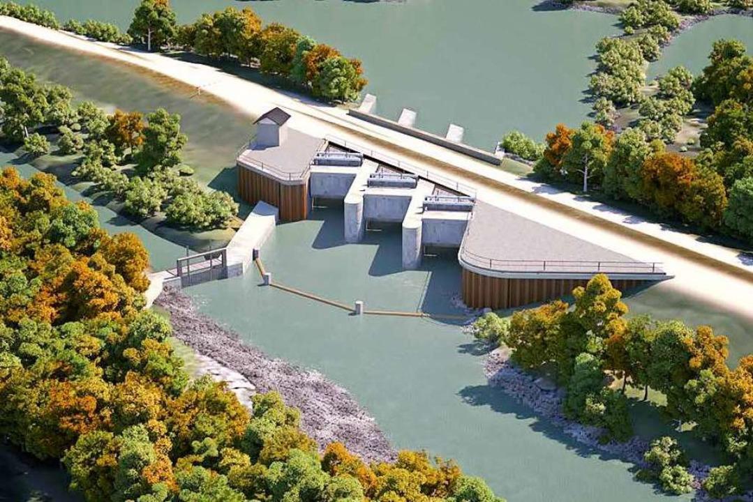 Das künftige Einlassbauwerk am Rheinseitendamm  | Foto: Regierungspräsidium