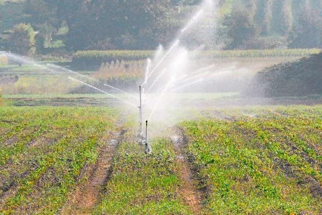 Der Wasserverband Südliches Markgräflerland ist auf der Suche nach neuen Ressourcen