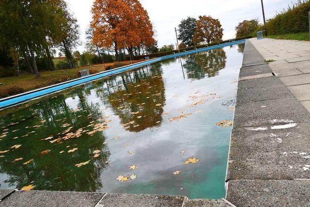 Das Freibad Kappel soll ein Naturschwimmbad werden