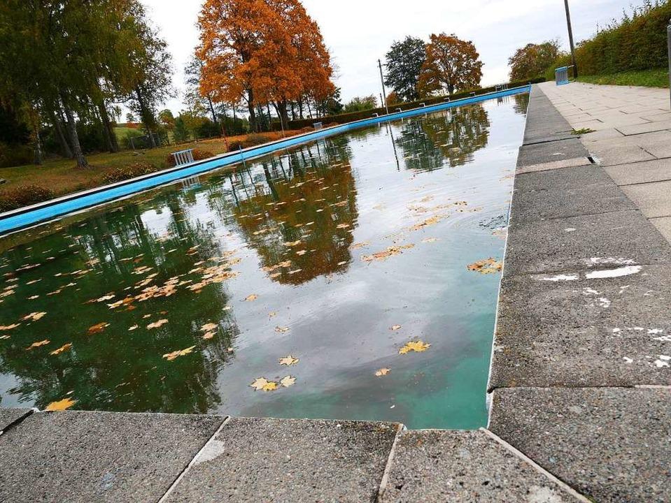Ein 50 Meter Becken weist das Freibad ...Naturschwimmbad umgebaut werden soll.   | Foto: Eva Korinth