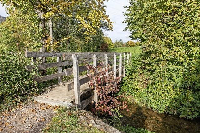 Neubau der Brücke über Rainbach ist dringend nötig