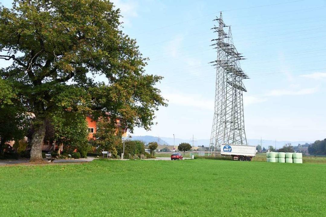 """Das geplante Baugebiet """"Scherrac...8220; liegt an der Grenze zu Maulburg.    Foto: Robert Bergmann"""