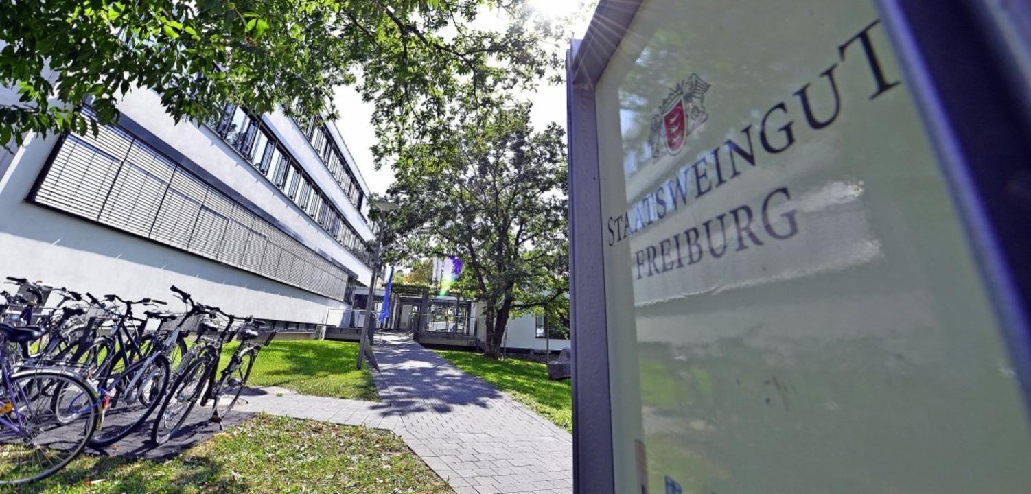 Das staatliche Weinbauinstitut in Freiburg hilft den 15500 Winzern in Baden.  | Foto: Michael Bamberger