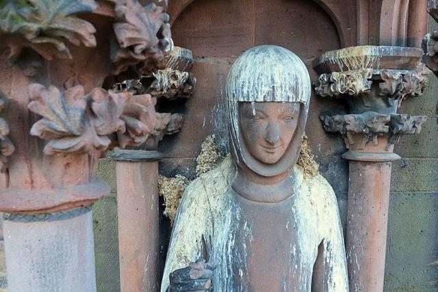 Neue Netze zum Schutz der Figuren am Freiburger Münster