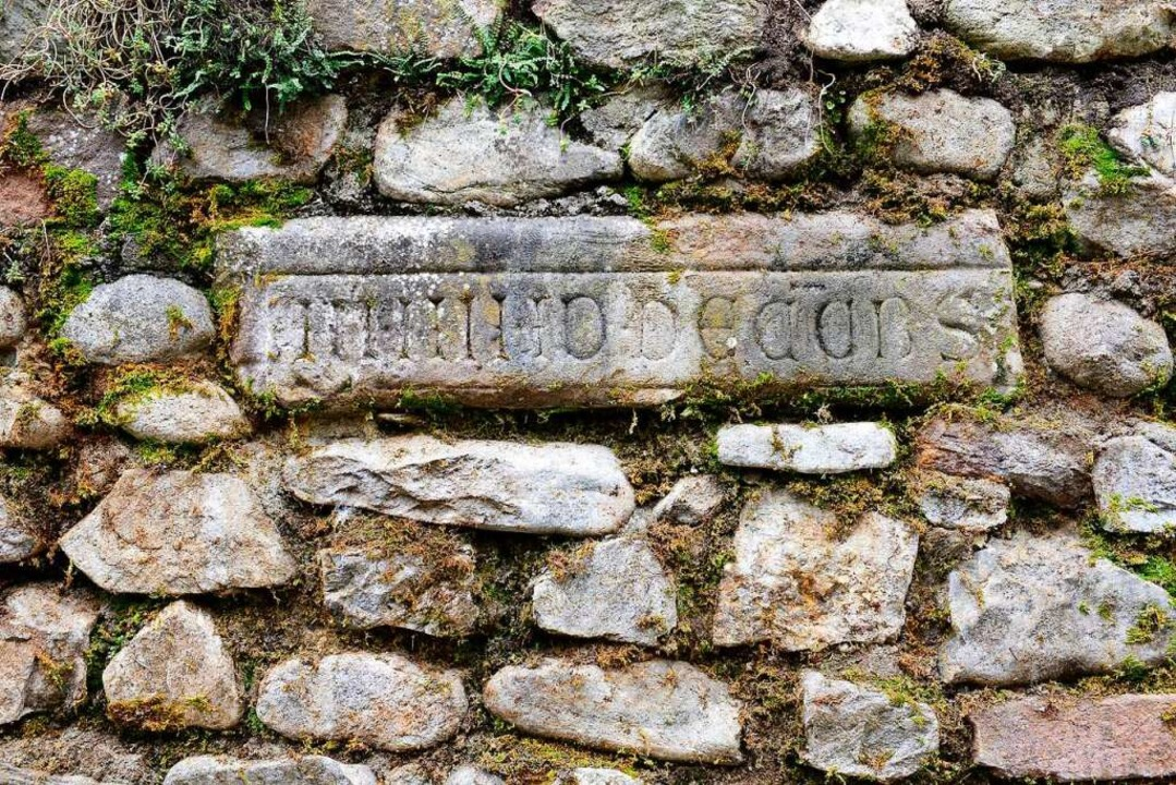 Die historische Steinmauer in Günterstal    Foto: Ingo Schneider