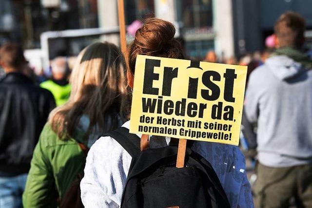 Die Corona-Proteste in Lörrach sind eine reine Provokation