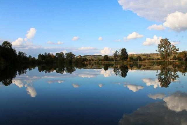 Spiegelungen am Malterdinger Baggersee