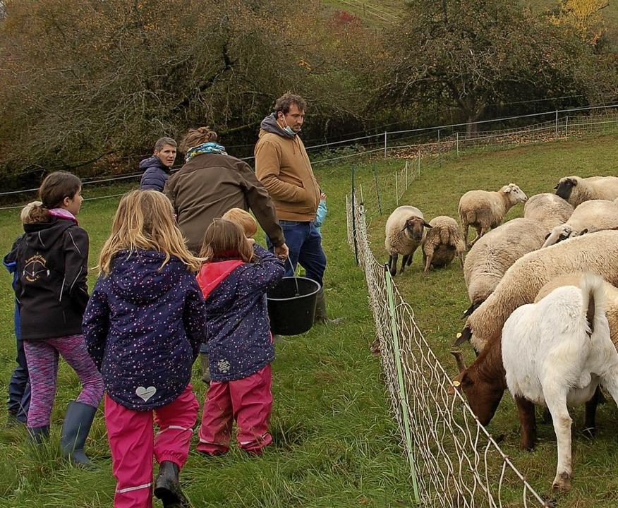 Die Begegnung mit den Tieren war ein Erlebnis für die Kinder.  | Foto: Petra Wunderle