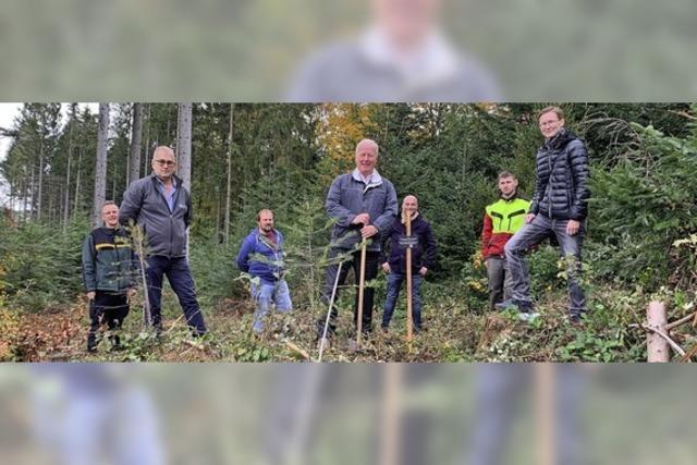 Politik im Schweighausener Wald