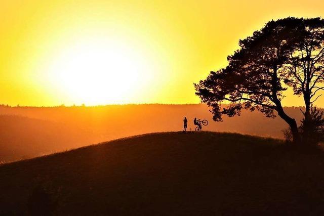 Mountainbiker macht Tricks im Sonnenlicht