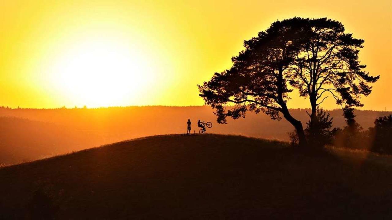 Im Sonnenlicht    Foto: Frank Schwörer
