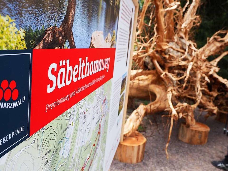 Auf Tafeln wird der Säbelthomaweg am S...zel im Hintergrund ist ein Hingucker.     Foto: Susanne Gilg
