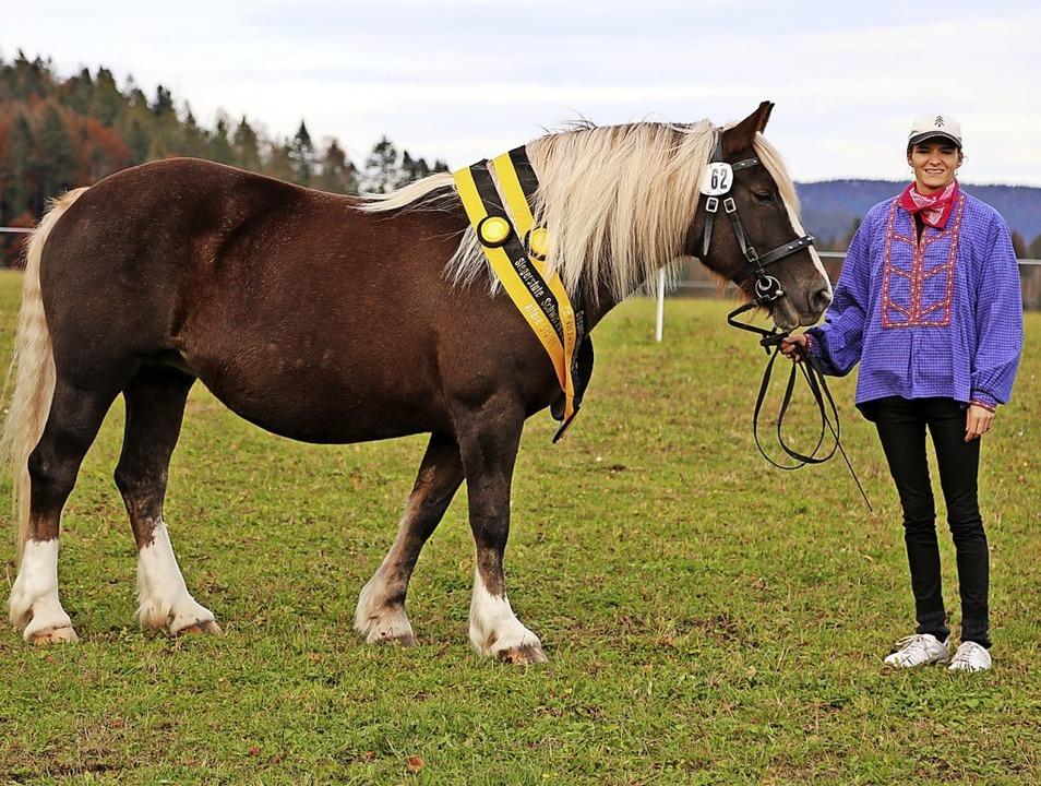 """Stute """"Donna Clara"""" im Bes...samtsiegerin der Verbandspferdeschau.     Foto: Schwarzwälder Pferdezuchtgenossenschaft"""