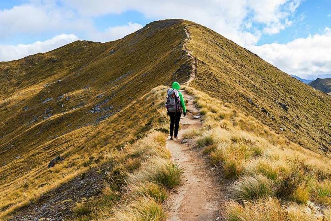 Der Fiordland-Nationalpark ist die spe... – und der abwechslungsreichste.    Foto: naruedom  (stock.adobe.com)