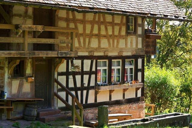 Wenn der Auerhahn im Schwarzwald klackert